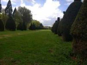 A typically beautiful Rutland hedgerow