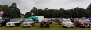 Wolseley 14/56 tourer, 1500, 11/22, 15/50, 16/60 and New Fourteen at the MVA rally at Thoresby in 2021